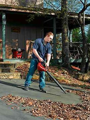 Craftsman HP Vac with Blower Incl